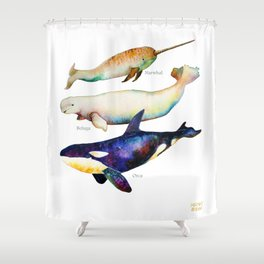 Best Buddies - Narwhal, Beluga & Orca Killer Whales Shower Curtain