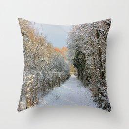 Winter Walkway Throw Pillow