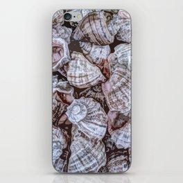 Puka Seashells iPhone Skin