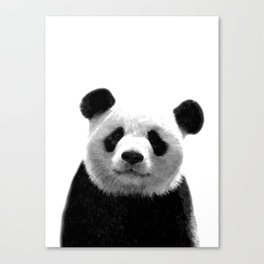 Black and white panda portrait Canvas Print