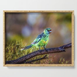 Mallee Ringneck Parrot Serving Tray