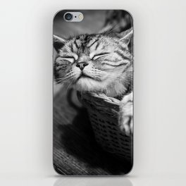 sleepy cat iPhone Skin