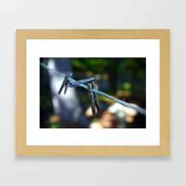 Weathered Clothespins Framed Art Print