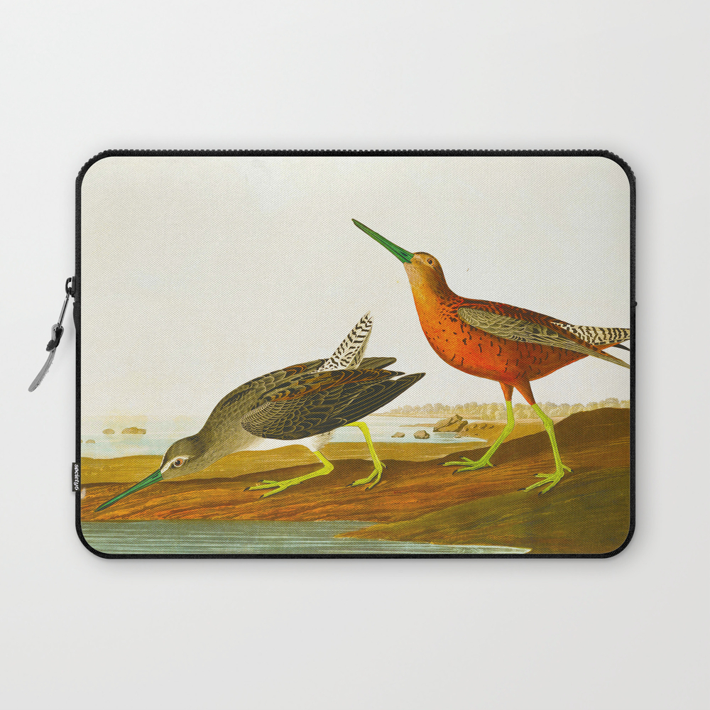 Red-Breasted Snipe Bird Laptop Sleeve by enshape (LSV6426545) photo