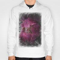 hydrangea Hoodies featuring Hydrangea by Paul & Fe Photography