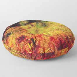 Magic Place, Stoney Hill, Vancouver Island Floor Pillow