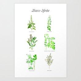Basic Herbs Art Print