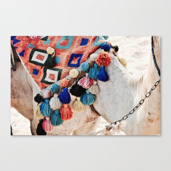 EGYPTIAN CAMEL Canvas Print