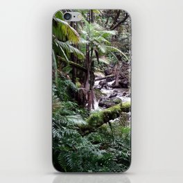 Tropical Forest 09 iPhone Skin