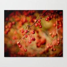 Cranberries Canvas Print