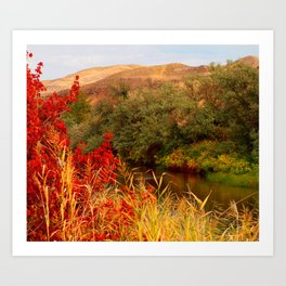 Fall by the water Art Print