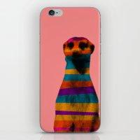 hakuna iPhone & iPod Skins featuring Hakuna Piñata by Triplea