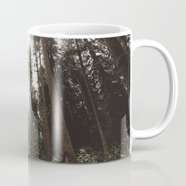 Redwood Forest Adventure II - Nature Photography Coffee Mug