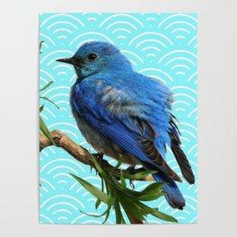 AQUA SPRING BLUE BIRD ART Poster