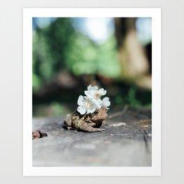 flower crown toad Art Print