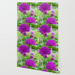 Purple Sensation Wallpaper