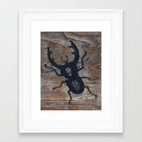 beetle Framed Art Prints featuring Beetle by liberthine01