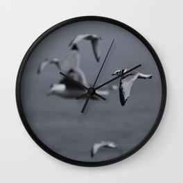 Kittiwake Wall Clock