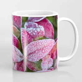 Frost on Red Leaves Coffee Mug