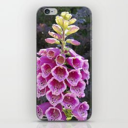 Gloves in summer!  Foxglove, Digitalis purpurea iPhone Skin