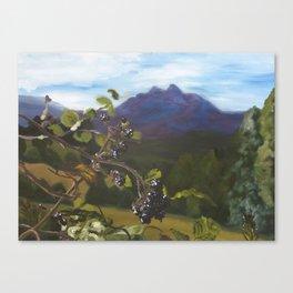 Blackberries Under Sleeping Beauty Canvas Print