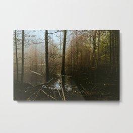 Moody Flood // Appalachian Trail Metal Print