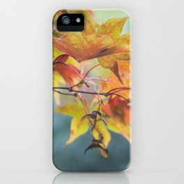 Yellow Acer Leaves iPhone Case