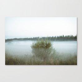 Misty field 5/5 Canvas Print