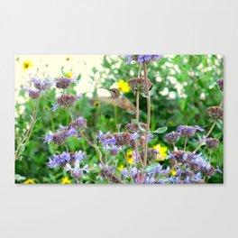 Little Garden Keeper Canvas Print