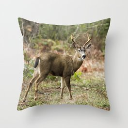 A Prince Along King's Road Throw Pillow