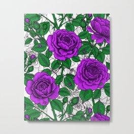 Purple roses 2 Metal Print