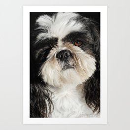 Your best friend. Art Print