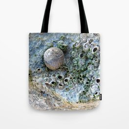 Nacre rock with sea snail Tote Bag