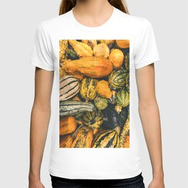 Autumn Farm Feast (Color) T-shirt