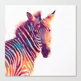 The Aesthetic - Zebra Canvas Print