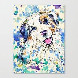 Aussie Pup - Australian Shepherd Dog Painting Canvas Print