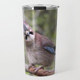 Cute Jay bird Travel Mug
