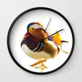 MANDARIN DUCK WALK Wall Clock