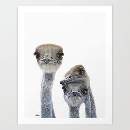 3 Emus Art Print. Original Acrylic Painting. Ideal Nursery Wall Art. Nursery Animal Print. Art Print