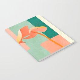 tropical geometry Notebook