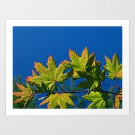 Hands of Autumn Art Print