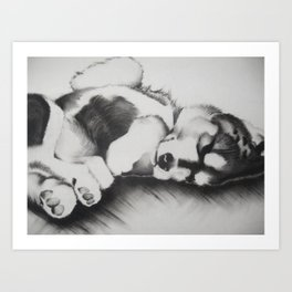 Upside down pup Art Print