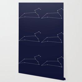Leo Astrology Star Sign Blue Minimal Wallpaper