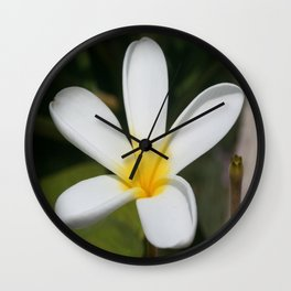 A Single Plumeria Flower Macro  Wall Clock