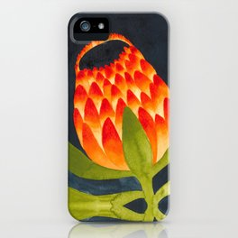 Floral symmetry 1. iPhone Case