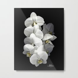 Jessica's Orchids Metal Print