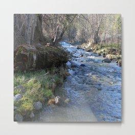 East Fork Hayfork Creek.... Metal Print