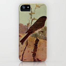 Slate colored Junco junco hyemalis4 iPhone Case