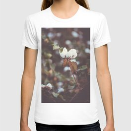 Cotton Flower 2 T-shirt