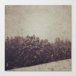 Winter Drift Canvas Print